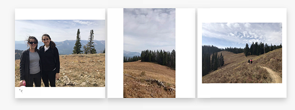 How to Post Multiple Images With Different Sizes to Instagram